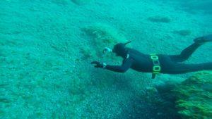 Thomas Sepia pic Freediving El Hierro